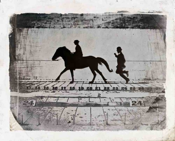 Eadweard Muybridge - Leland Stanford, Jr. on his Pony  Gypsy —Phases of a Stride by a Pony While Cantering  - 1879  - Wilson - Centre for Photography