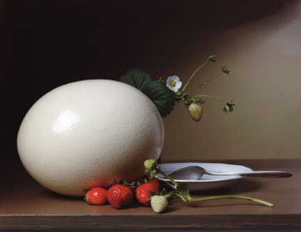 Strawberries and Ostrich Egg - 2007 - Sharon Core