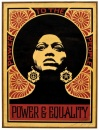 \'Shepard Fairey - A Private Collection\' a Roma