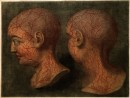 Superficial blood vessels of the head and neck. Coloured mezzotint by J F Gautier d'Agoty, 1748 - Wellcome Library