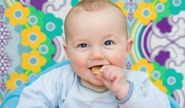 Baby eating a biscuit --- Image by © Image Source/Corbis