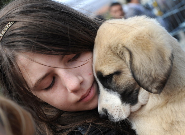 A Romanian girl holds a puppy during a p