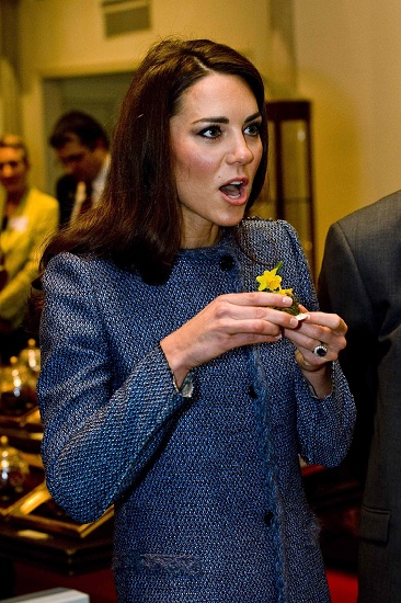 Look Kate Middleton - Missoni