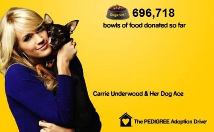 carrie underwood cani