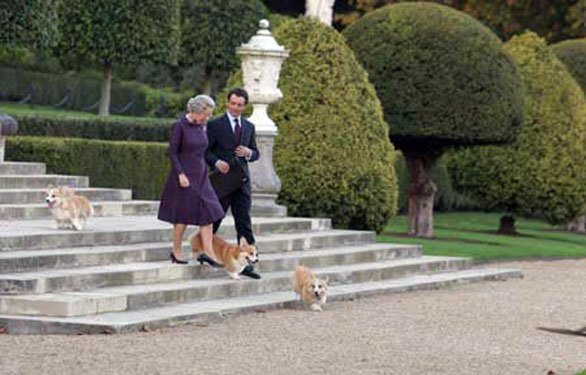 Cani e cinema: i corgi del film The Queen - La regina