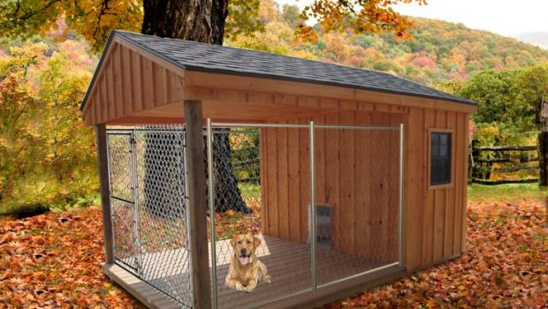 Home Design Ideas For Dogs: Cucce Per Cani Coibentate