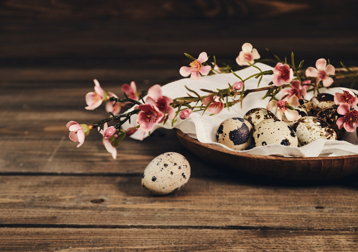 Easter still life with blossoms and quail eggs