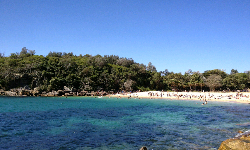 Shelly Beach a Manly