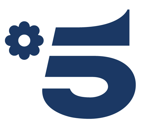 Logo Canale5
